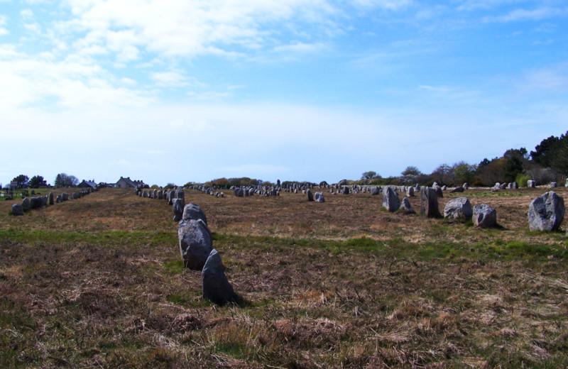 http://lorenzozo.free.fr/Bretagne_avril_2008/Carnac_Alignements.jpg